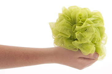 hand holding body sponge