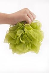 Green body sponge