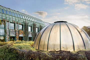 Dome of light. Modern ecological Library in Warsaw.