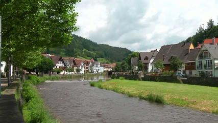 Flußufer mit Wiese und Häusern