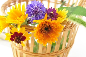 summer flowers in the basket