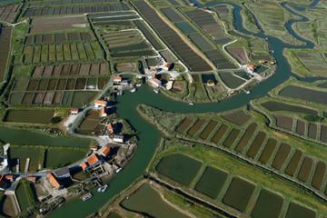 Marais ostréicole de La Grève à Duret, Arvert, Charente-Maritime