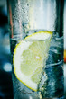 Здесь вы можете найти рецепты коктейлей с джином с различными...