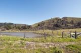 A Pond Restoration Site, San Mateo County, California, Usa poster