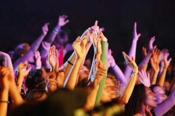 foule main concert délire ambiance musique fan spectacle tendu d