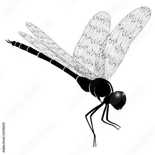 蜻蜓剪影矢量图