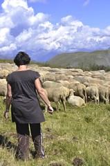 La bergère et son troupeau