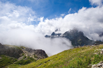 Alpine Bergwiese, Querformat