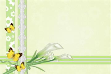 Three calla lilies background