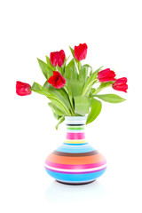 red tulips in a colorful striped vase isolated on white backgrou