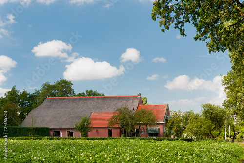 Farm house in landscape with potatoes