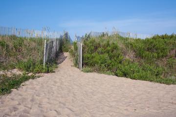 Walkway over sand dunes in North Carolina