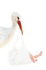 Storch mit Baby im weißen Beutel