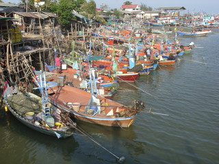 Moored Thai fishing boats