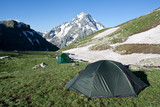 Camping tents on sunny grassland. poster