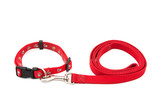 Dog Collar and Leash poster