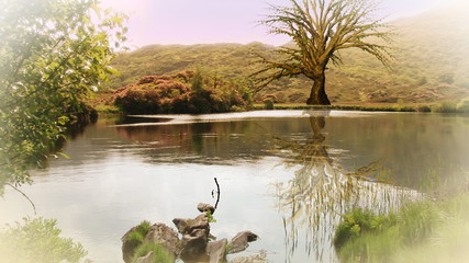 3D animation of a tree growing in a landscape