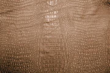 Crocodile leather skin imitation (alligator)