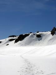 Spuren im Schnee am Gotthard