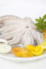 Octopus with fresh vegetables on plate