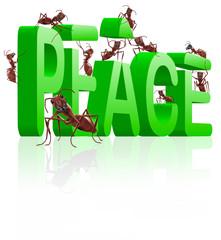 peace making no more war
