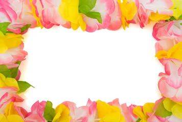 Colorful lei