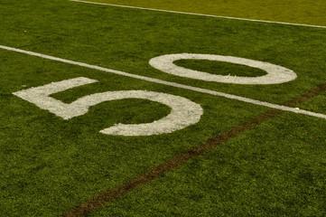 Fake Grass Football Field Fifty Yard Line