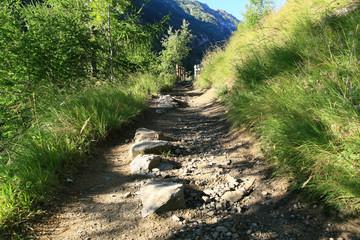 chemin de randonnée en haute altitude