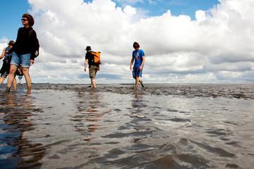 Wattwandern an der Nordsee 694