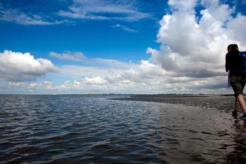 Wattwandern an der Nordsee 692
