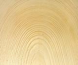 Fototapeta tekstura - tło - Drewno