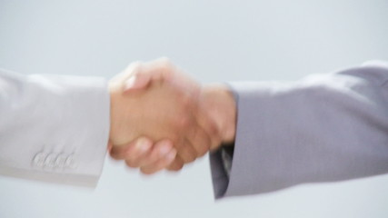close-up of a professional handshake