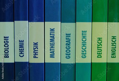 Schulfächer in einer Buchreihe