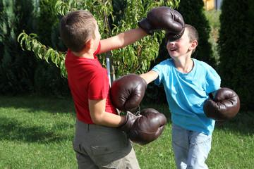 Boxing sibling