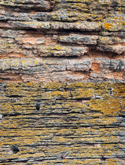 two different sandstone texture lichen covered with bank swallow