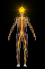 Human body with flashing neurons