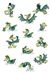 collection of fun cartoo, ducks