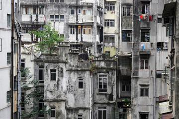 Hong Kong habitat insalubre