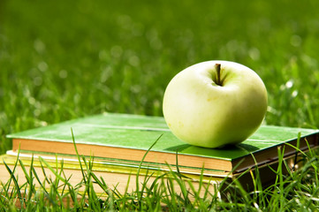 Apple on pile of books on grass