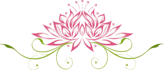Lotus, Lotusblüte, Wellness, Seerose, Rose, Yoga