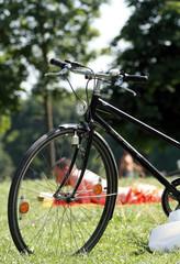 Fahrrad im Park I