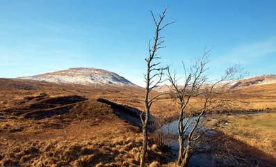 Spätwinter in den schottischen Highlands