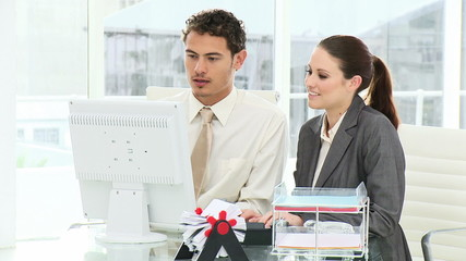 two attractive executives working at a computer