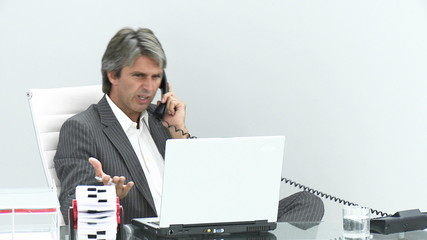 businessman on phone working with computer in his office