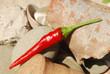 Peperoncino rosso fresco