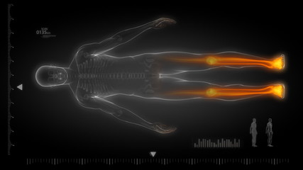 Human body scan with visible skeleton