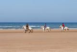 ballade de chevaux sur la plage