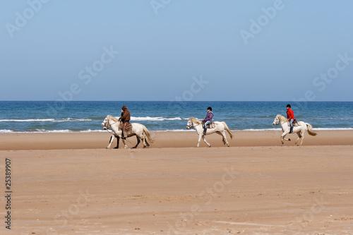 Staande foto Paardrijden ballade de chevaux sur la plage