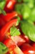 Tomate-Basilikum Makro