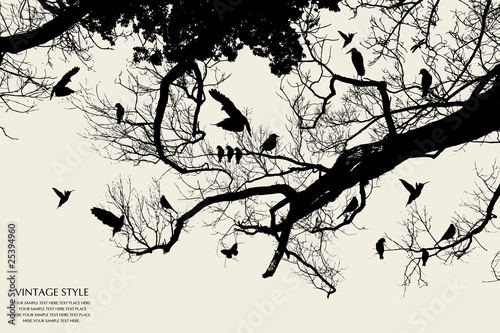 Foto op Plexiglas Vogels op boom tree and bird